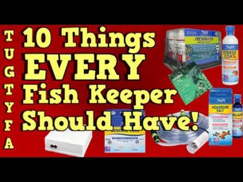 10 Things Every Fish Keeper Needs To Have! The Ultimate Guide To Your First Aquarium Part 9