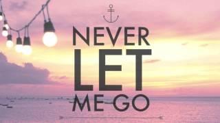 Never Let Me Go - Shawn Mendes