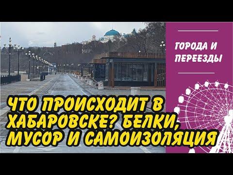 Что происходит в Хабаровске? Белки, мусор и самоизоляция