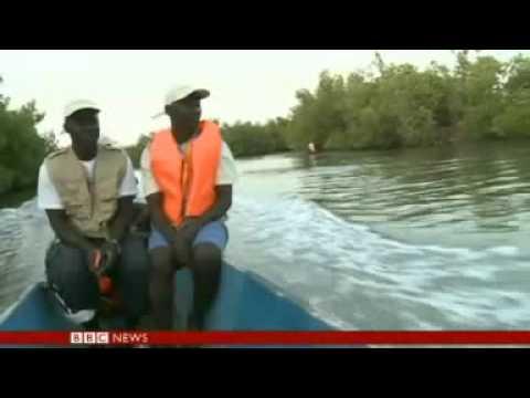 Senegal begins marine conservation project  YouTube
