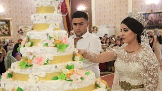 Свадьба Года Башир Севиля