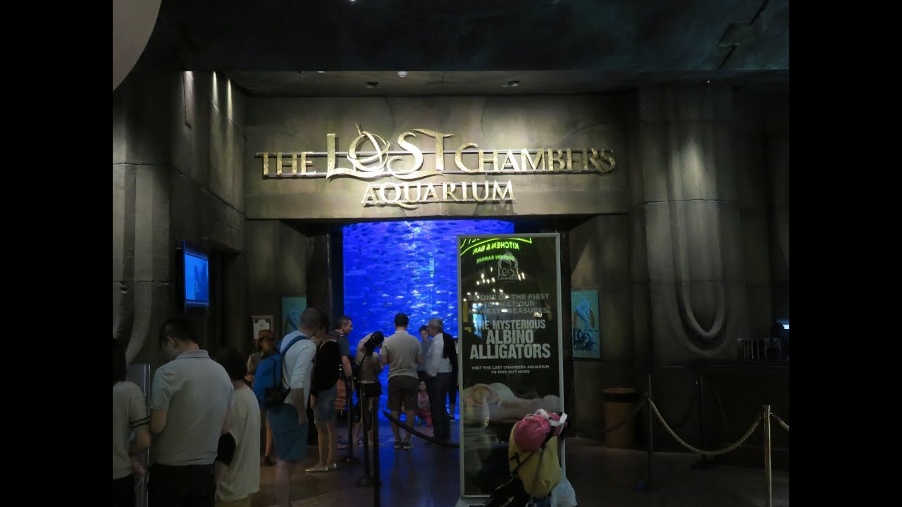 Inside the lost chamber of Atlantis, Palm jumeirah, DUbai