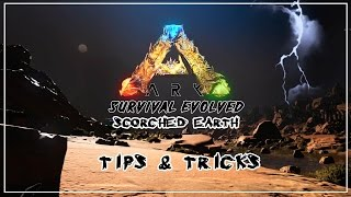 Getting Started on ARK: Scorched Earth - SURVIVAL TIPS & TRICKS ( Scorched Earth Tutorial )