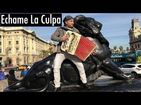 ECHAME LA CULPA | cover fisarmonica | MIMMO MIRABELLI [ Barcelona ]