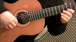 Birdy - People help the People - classical guitar