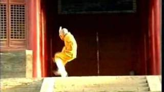 Shaolin Small Arhat Boxing