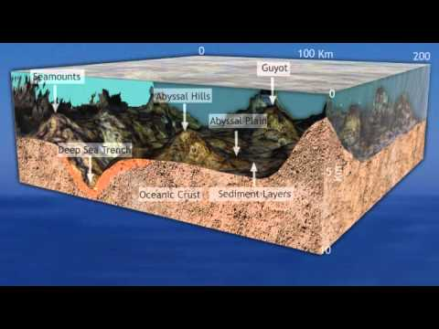 3D Animation of Sea trenches.
