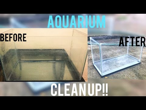 HOW TO:  clean Aquarium glass