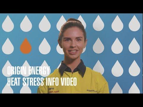 Origin Energy Heat Stress  Information Video