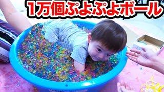 【大量】ルイくんと1万個のぷよぷよボールで遊んでみた…!【ZyonMana × 876】 thumbnail