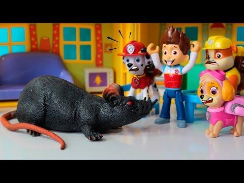 Patrulha Canina com Medo do Rato Esfomeado!! Em portugues Completo Clube Kids