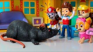 Patrulha Canina descobrem o Rato Esfomeado!! Em portugues Completo