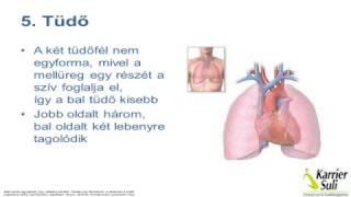 légzési gyakorlatok leszokni a dohányzásról
