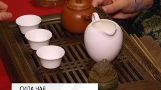 Белгородский чайный эксперт рассказал о нюансах популярного напитка