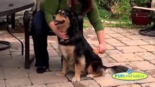 Фурминатор для собак(, 2015-07-19T13:39:46.000Z)