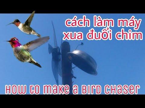 Cách làm máy xua đuổi chim( how to make a bird chaser )