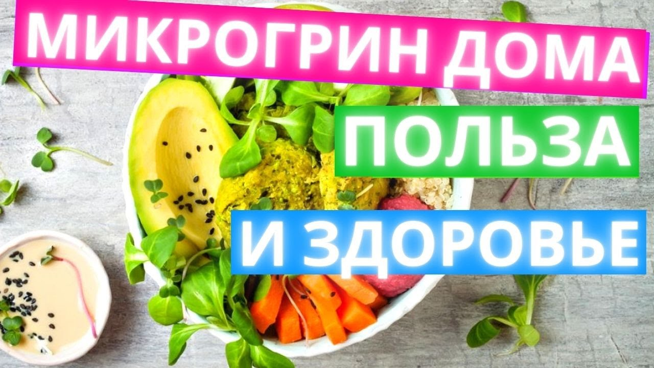 Микрогрин - зеленый суперфуд! В чем польза микрозелени и как её выращивать дома?
