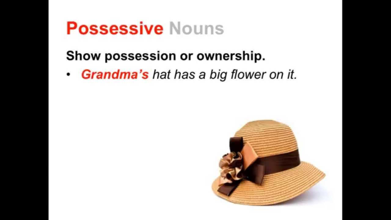 Singular Plural and Possessive Nouns – Singular and Plural Possessive Nouns Worksheet