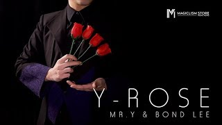 Y-Rose par Mr. Y et Bond Lee - Bigmagie