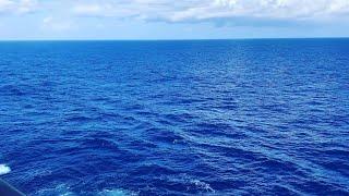 Carnival Sunshine Balcony Cabin 6320 Quick Review!