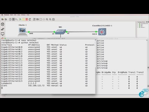 GNS3 Talks: Python for Network Engineers with GNS3 (Part 12) - Netmiko, SSH, Python and Cisco