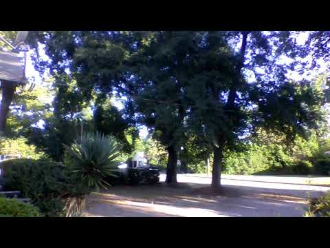 Awesome Relaxing Video Of A Quiet Neighborhood In Augusta GA: For Meditation Study!