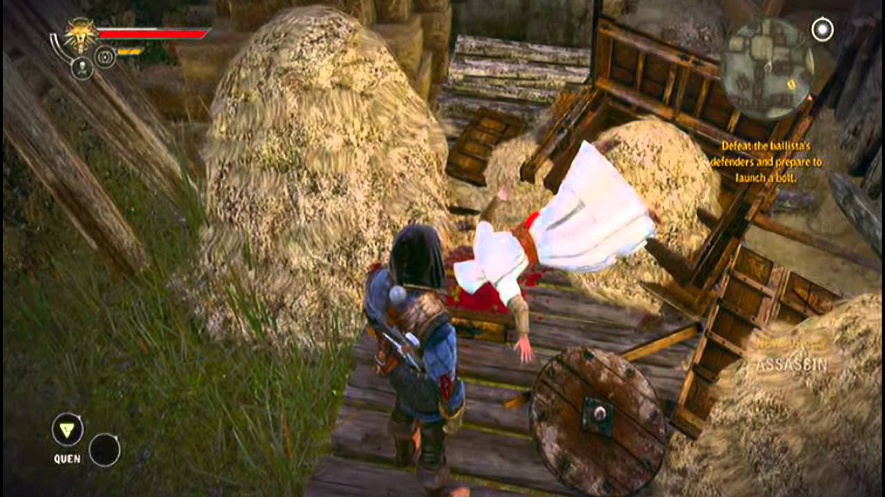 The Witcher 2: AOK - Assassin's Creed Easter Egg - YouTube