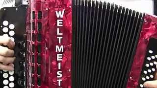 Гармонь Weltmeister Aleksandra - То не ветер ветку клонит