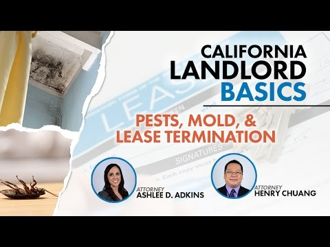 Pests, Mold, & Lease Termination Webinar Replay