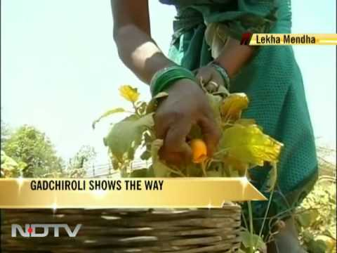 Gadchiroli shows the way