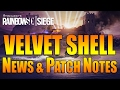 Rainbow Six Siege - In Depth:  LATEST Velvet Shell NEWS & PATCH NOTES