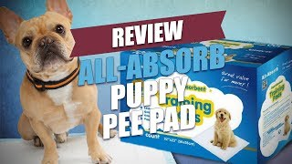 All-Absorb Puppy Pee Pad Review