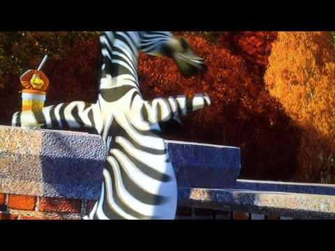 Madagascar:fun pepole fun time