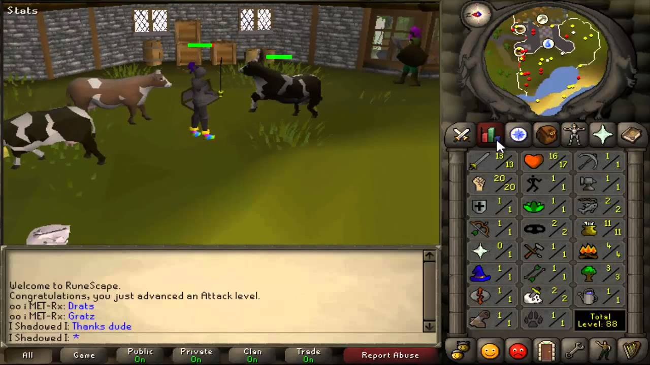 OSRS combat fighting a cow!