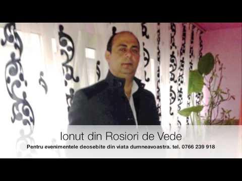 Formatie petrecere Rosiori de Vede