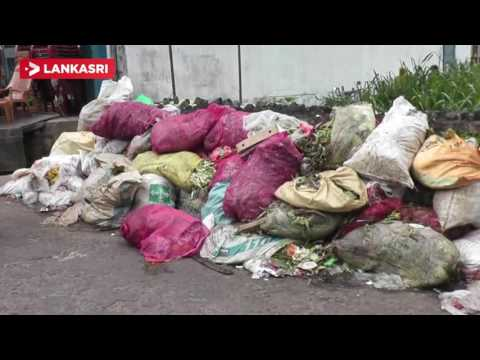 People in the implementation of solutions to the problem of garbage disposal
