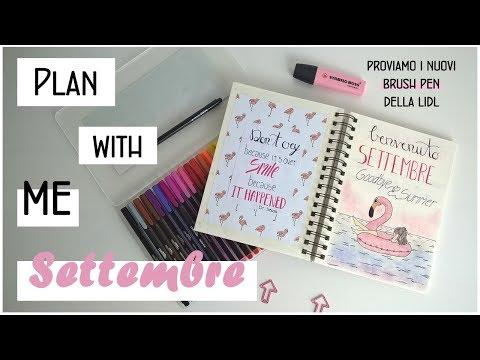 Bullet Journal setup/Plan with me september/Proviamo i nuovi brush pen di LIDL