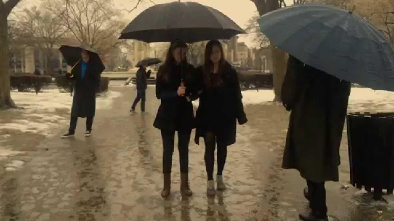 paris path wet day