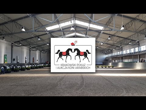 The Cracow Show and Arabian Horse Auction 2017