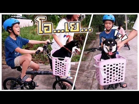 พามิงุไปปั่นจักรยาน !! -