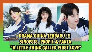 "Wahhh lai kuan lin ex wanna one debut perdana ni guys, dalam drama china terbaru yang berjudul ""a little thing called first love"" . dan serunya lagi in..."
