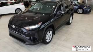 2019 RAV4 LE AWD Walk Around
