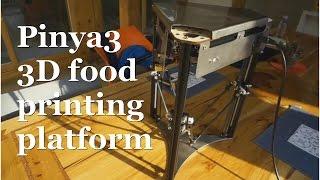 W#2 Pinya3 3d Food Printer Platform