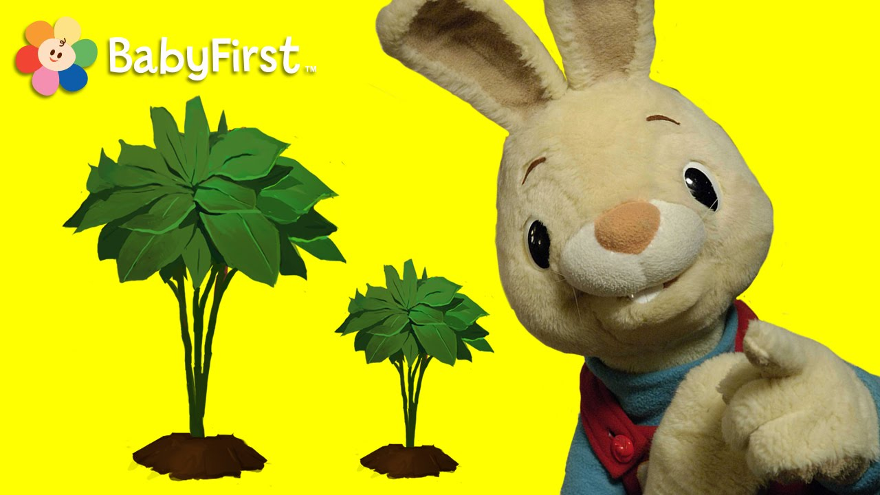 Big and Small, Opposites | Harry the Bunny | BabyFirstTV ...