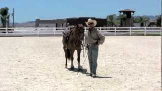 Teaching your horse to stand still while mounting