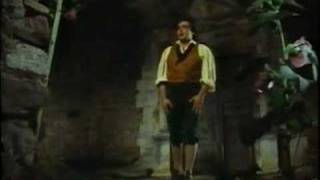 José Carreras - Una Furtiva Lagrima