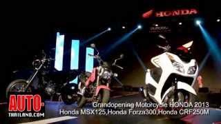 GrandOpening Honda Motorcycle MSX125-Forza300-CRF250M