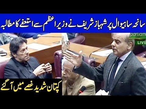 PM, CM Punjab should resign over Sahiwal incident |  23 January 2019 | Dunya News