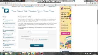 видео Как узнать посещаемость чужого сайта?