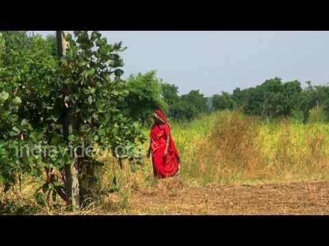 Bhimbetka Village life